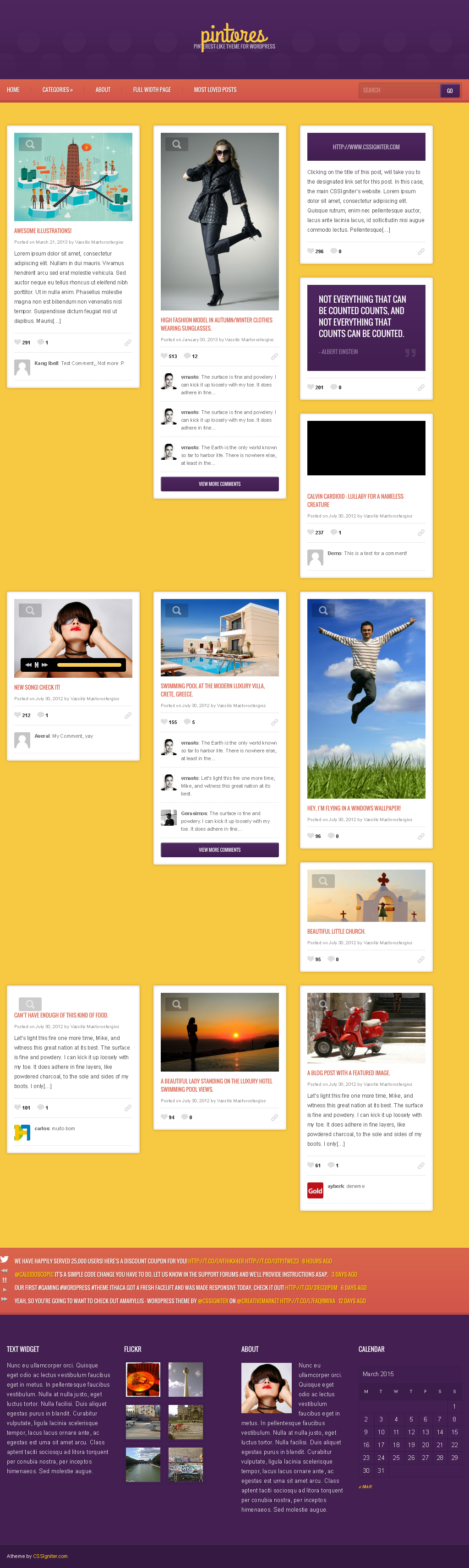 wordpress-pinterest-themes-pintores
