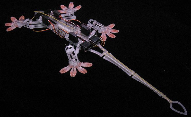 Bio Robotics: Wikimedia Commons